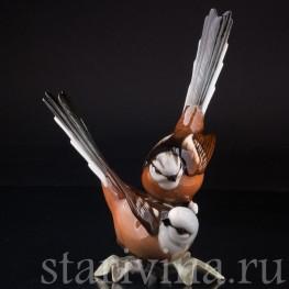 Статуэтка птиц из фарфора Длиннохвостые синицы, Hutschenreuther, Германия, вт. пол. 20 в.